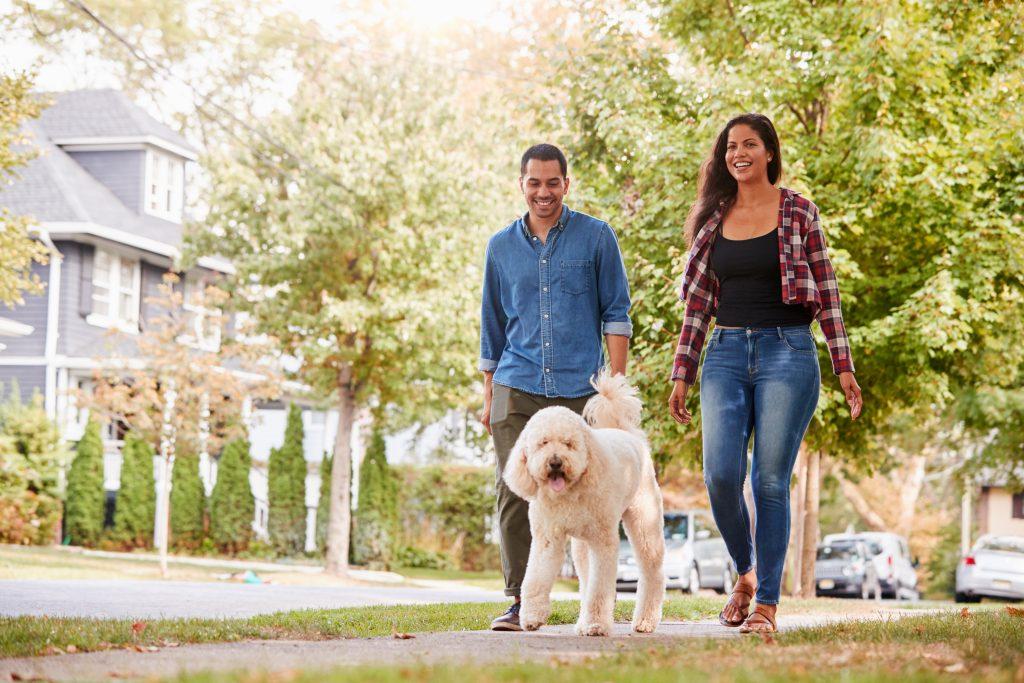 Couple,Walking,Dog,Along,Suburban,Street